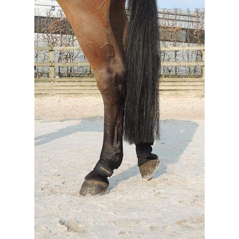 Image of Kentucky Pastern Wrap
