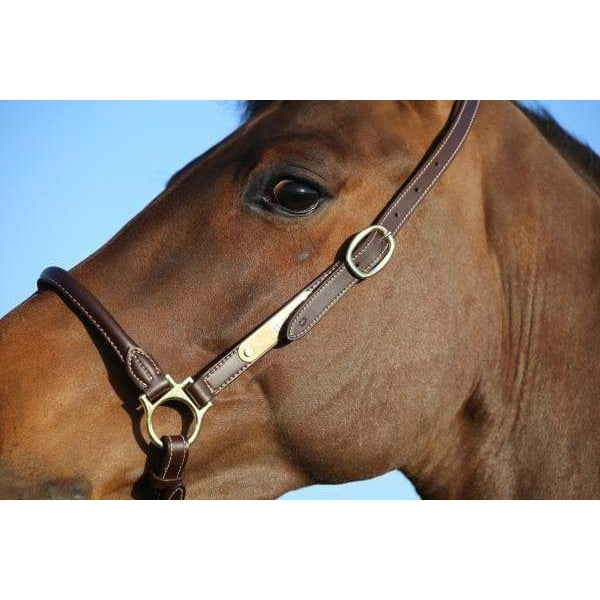 Kentucky Leather Grooming Halter