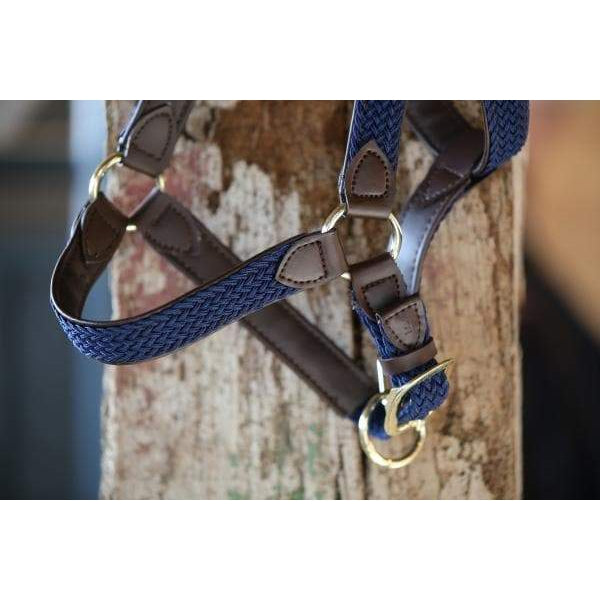 Kentucky Plaited Nylon Halter