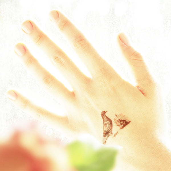 Pigeons Temporary tattoos PAPERSELF