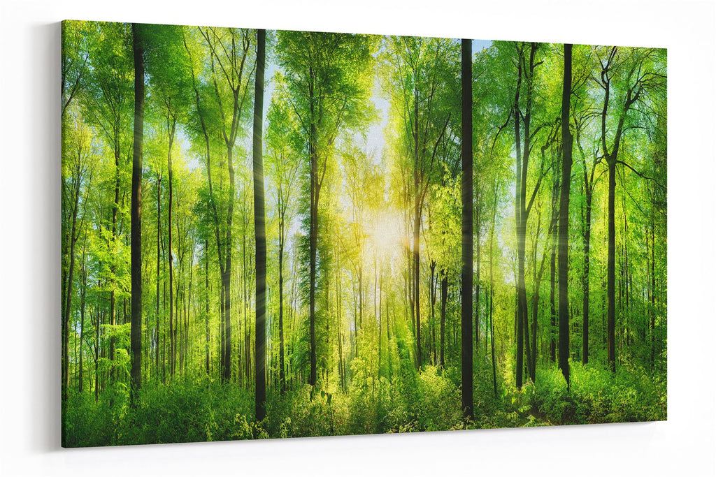 A2 45x60 Canvas Wall Art of Forrest for your Living Room Canvas Prints - Pictures
