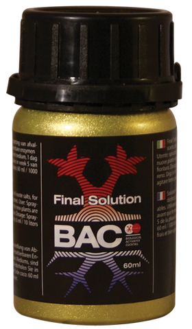 bac-final-solution