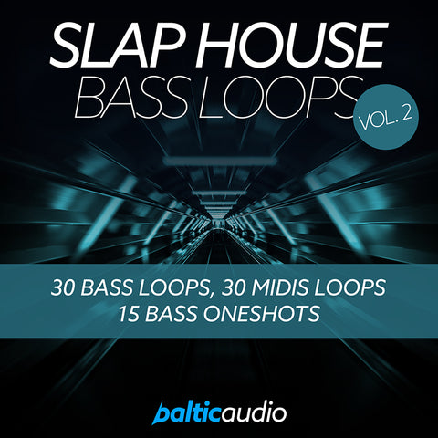 baltic audio - Slap House Bass Loops Vol 2