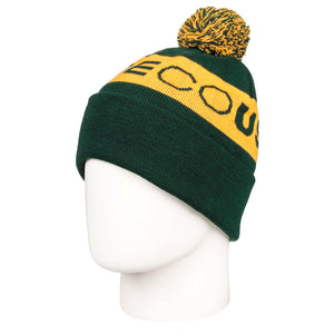 Men's DC Chester 2 Beanie