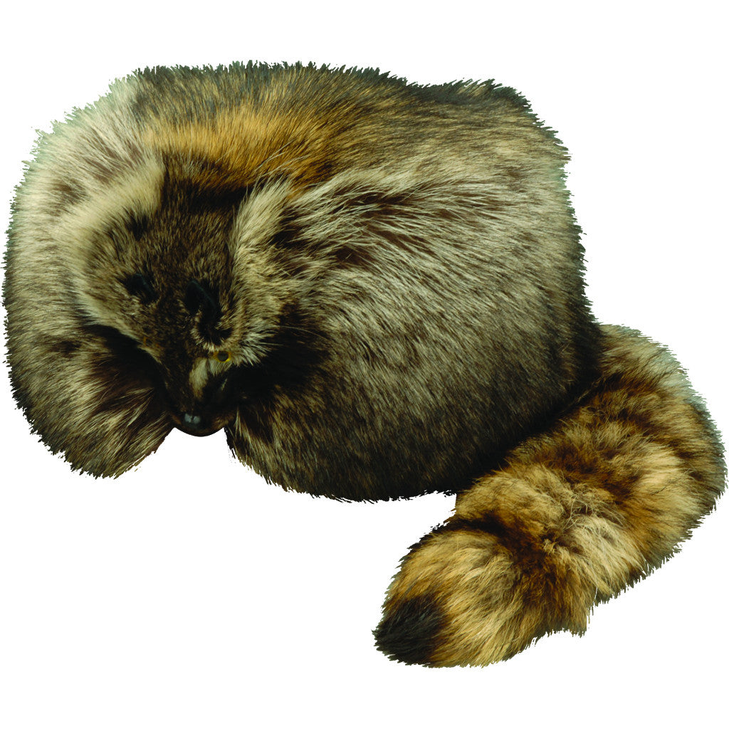 Davy Crockett Hat with Face and Tail  3062b02d6d56