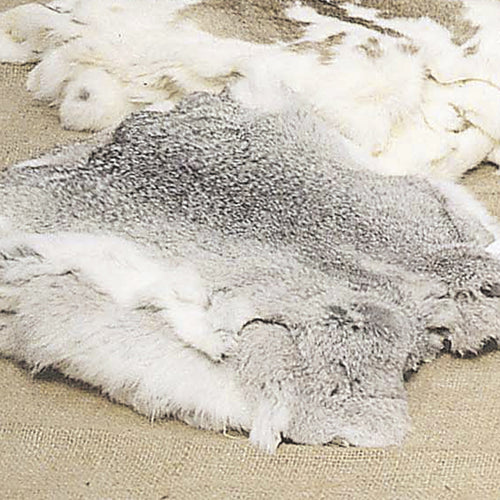 Natural Chinchilla Rabbits