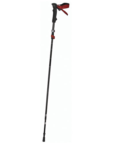 RWD Collapsible Walking Stick