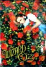 Wizard Of Oz Magnet Dorothy In Poppies