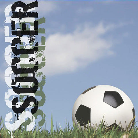 Papeer House Soccer Scrapbook Paper