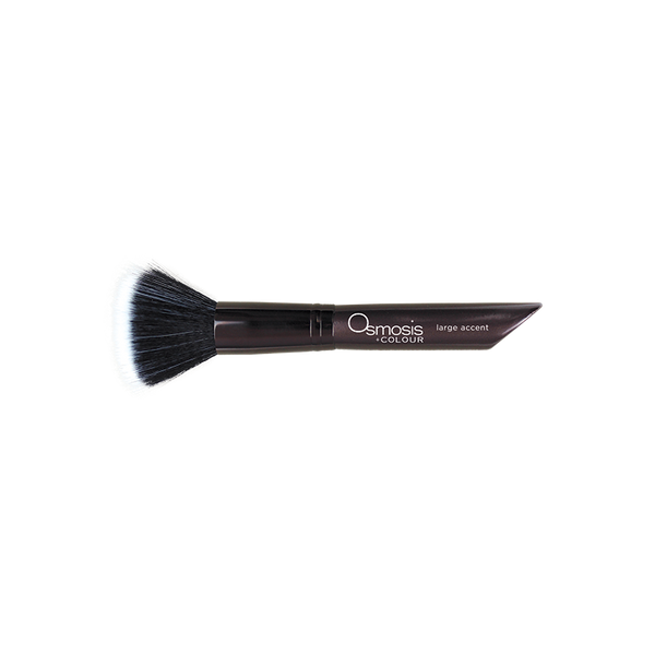 Osmosis Large Accent Brush - $37.00