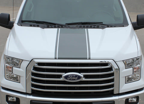 2015 2016 2017 2018 2019 2020 Ford F-150 Center Stripe Factory Style Vinyl Decal Graphic 3M Stripes