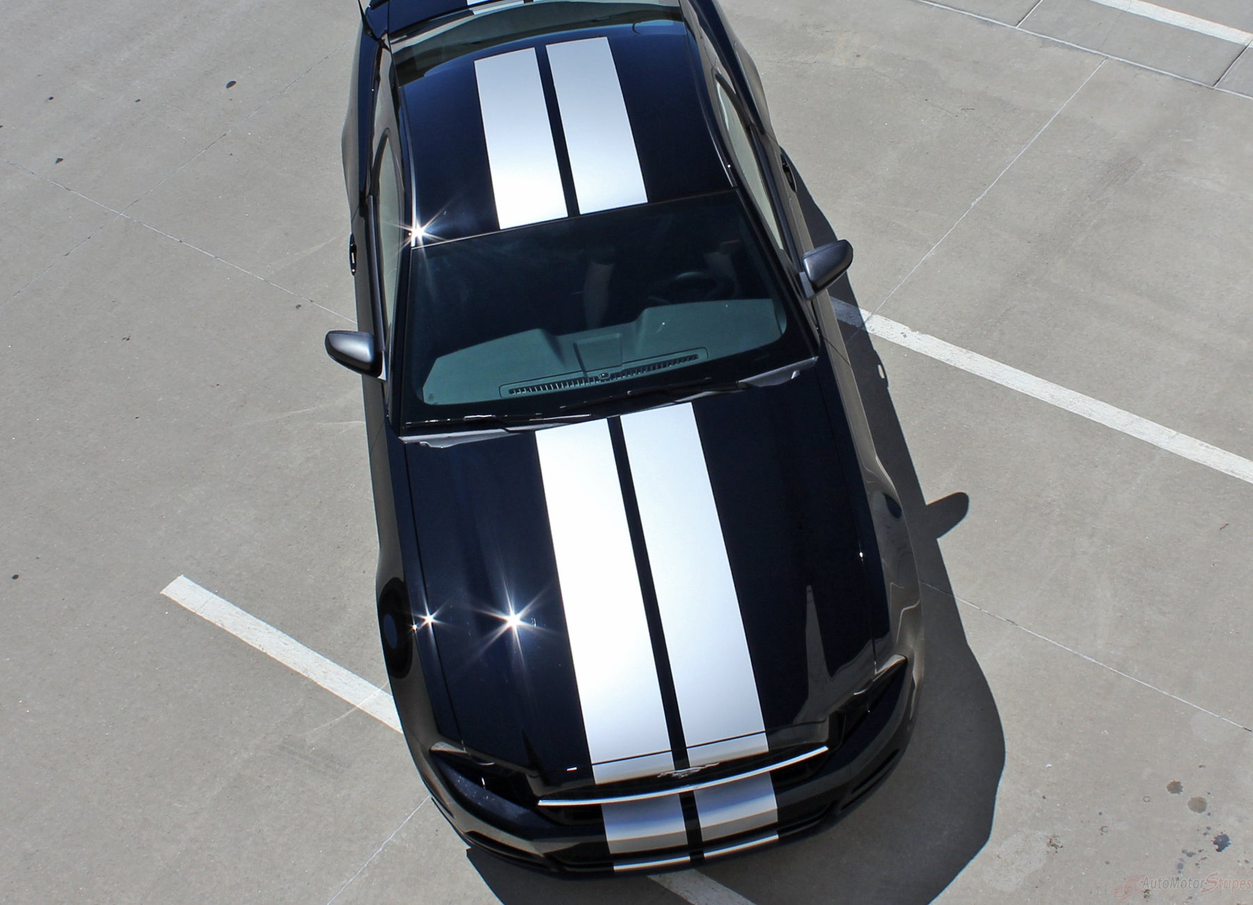 Racing rally stripes w// pin stripe graphics decal decals ANY YEAR Ford Mustang