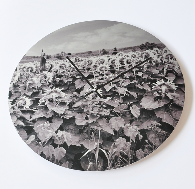 Clock Made from Sunflower Fields Photo Printed on Metal