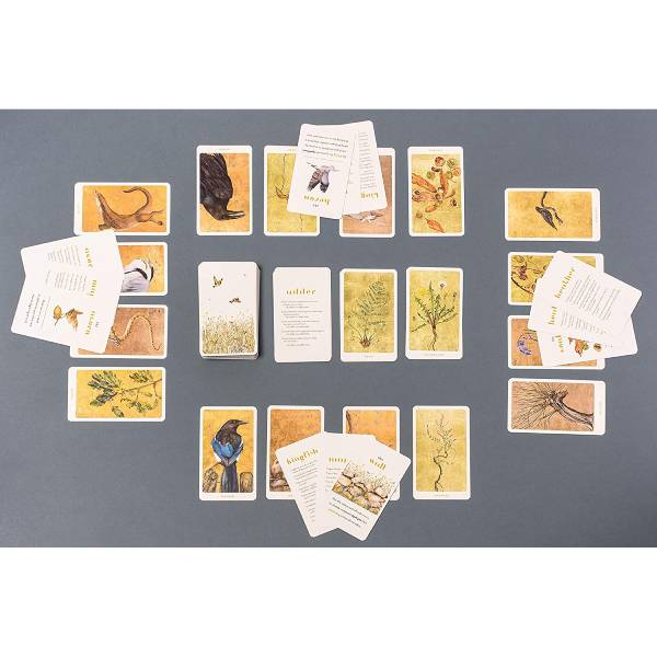 The Lost Words Card Game - The Literary Gift Company