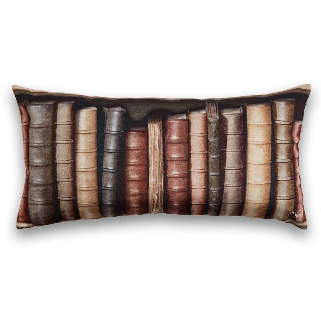 Large Antique Bookcase Cushion
