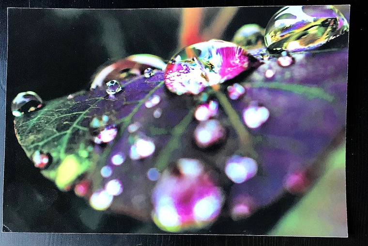 World Through Droplets Photographic Print