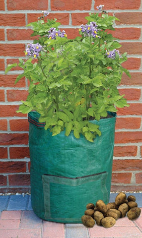 Bosmere Potato Planter Deck-Patio Grow Bag