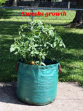 Go-GreenGardening Large Vegetable Grow Bag -  Reusable, 20 gallon capacity with 2 reinforced handles