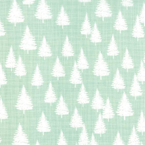 Winter Forest in Mint
