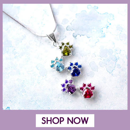 Rainbow of Paws Sterling Necklace - Shop Now