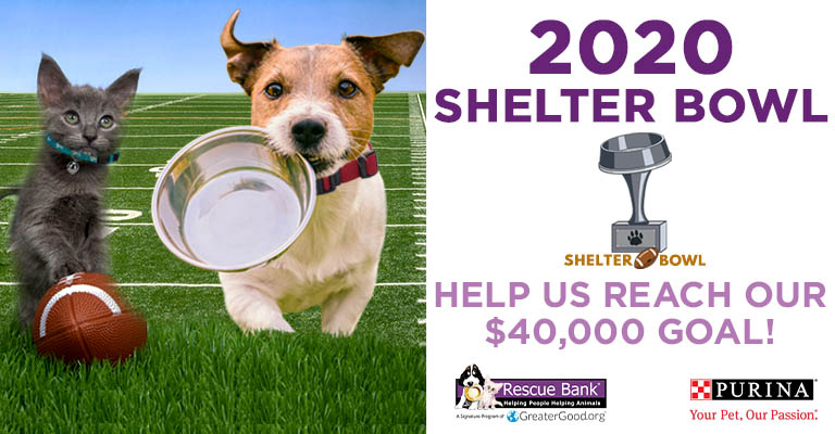 2020 Shelter Bowl | Help Us Reach our $40,000 Goal!
