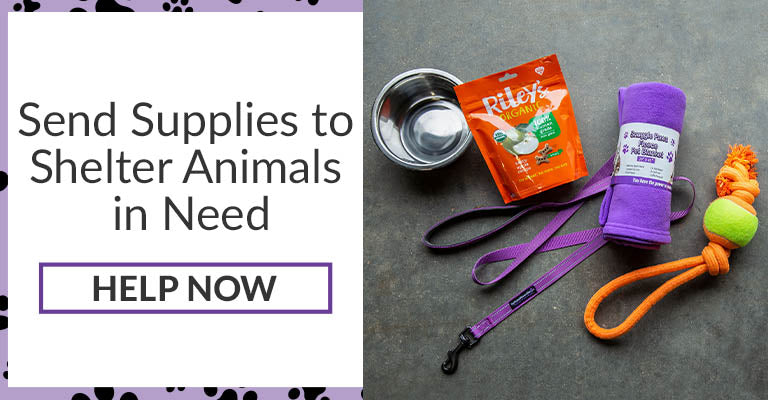 Send Supplies to Shelter Animals in Need | Help Now