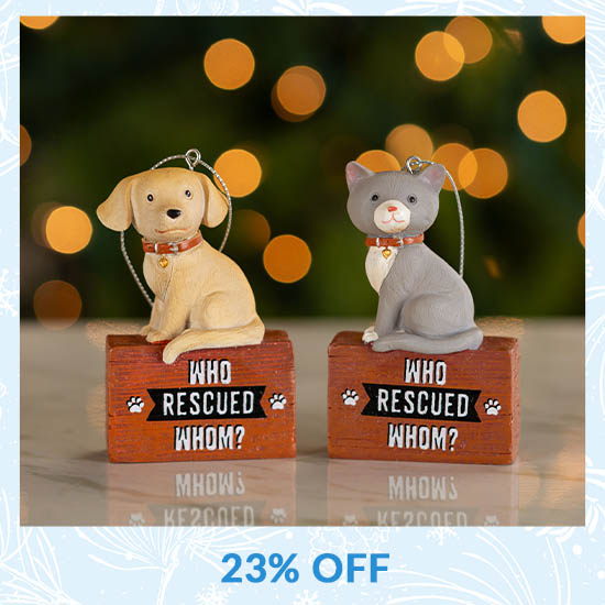 Who Rescued Whom Ornament - 23% OFF