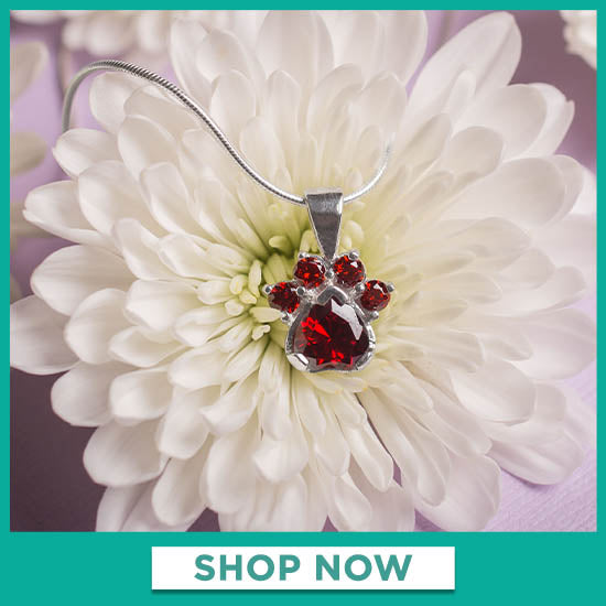 Paw Print Birthstone Sterling Necklace - Shop Now