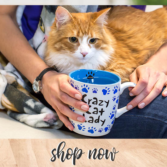 Crazy Cat Lady Grande Mug - Shop Now