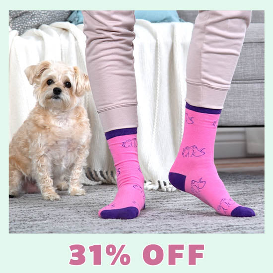 Cozy Pet Sock Collection Set of 3 - 31% OFF