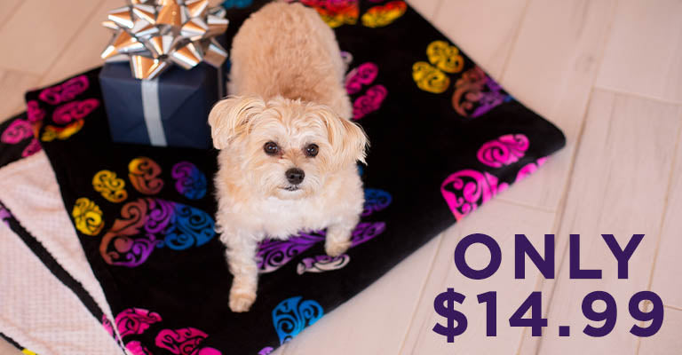 Super Cozy Swirl Paws Reversible Blanket | Only $14.99