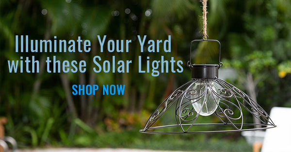 Illuminate Your Yard with these Solar Lights | Shop Now!