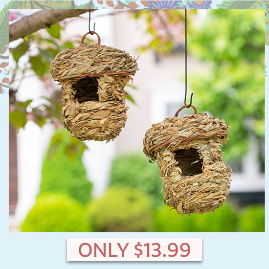 Roosting Pocket Birdhouses Set