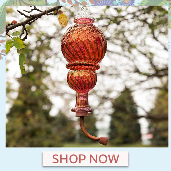 Double Ball Swirl Humming Bird Feeder