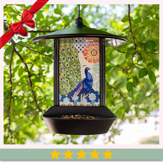 Wildlife Wonder Solar Light Bird Feeder  - ★★★★★