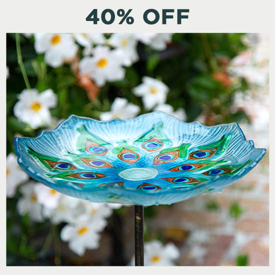 Peacock Glass Bird Bath - 40% OFF