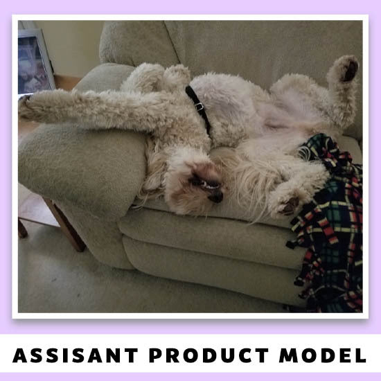 Assistant Product Model