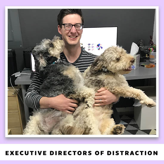 Executive Directors of Distraction