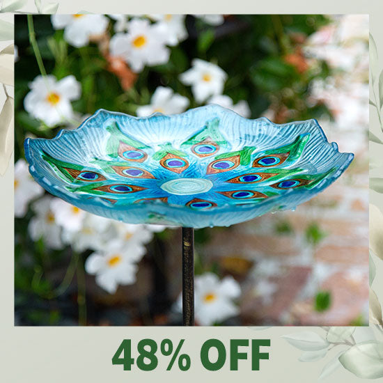 Peacock Glass Bird Bath - 48% OFF