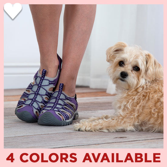 Pet Lovers Sport Sandals - 4 Colors Available