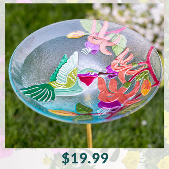 Fluttering Hummingbird Bird Bath - $19.99