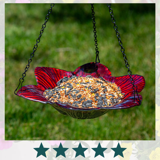 Pearl Glass Flower Hanging Bird Feeder - ★★★★★