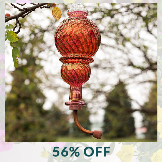 Double Ball Swirl Humming Bird Feeder - 56% OFF