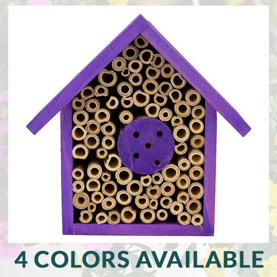 Wooden Bee House - 4 Colors Available