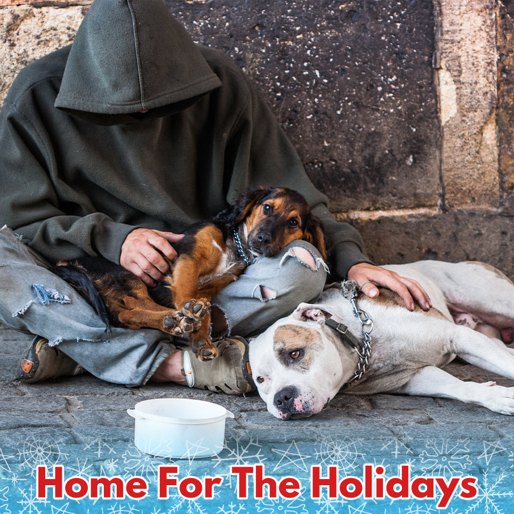 It's Giving Tuesday! Add $5 to provide a homeless veterans and their pets a home for the holidays?