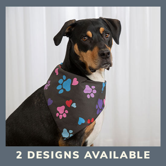 Patterned in Paws Pet Bandana - 2 Designs Available