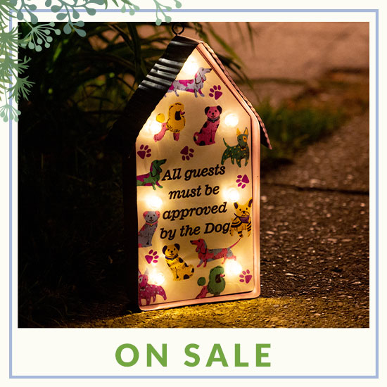 All Guests Solar Light - On Sale