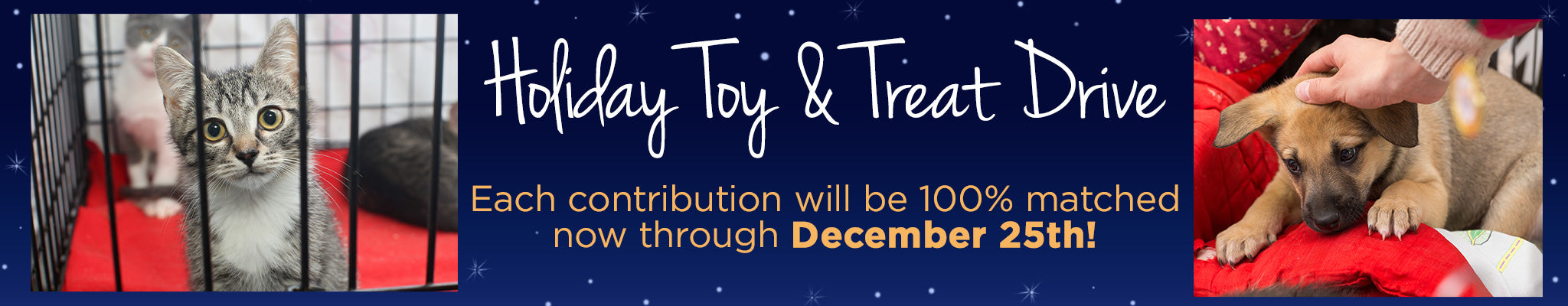 Holiday Toy & Treat Drive | Each contribution will be 100% matched now through December 25th!