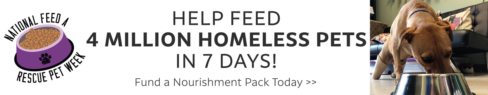 Help Feed 4 Million Homeless Pets in 7 Days! Fund a Nourishment Pack Today