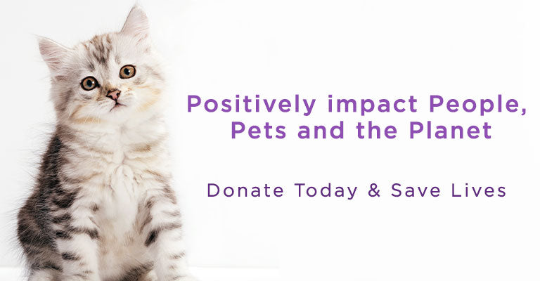 Positively impact people, pets and the planet | Donate Today & Save Lives